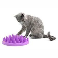 Mini Interactive Feeder - Purple